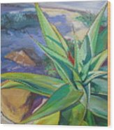 Aloe Vera Number Two Wood Print