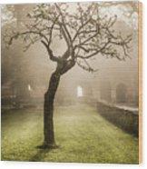 Alone In The Fog Wood Print