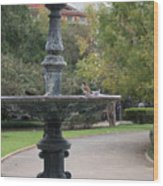 Alone In The Fountain Wood Print