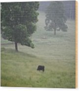 Alone In The Meadow Wood Print