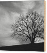 Alone On A Hill In Black And White Wood Print