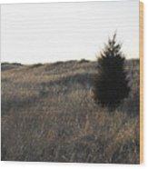 Alone Two Wood Print