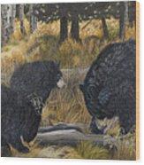 Along An Autumn Path - Black Bear With Cubs Wood Print