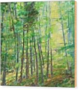 Along Buckslide Road Wood Print