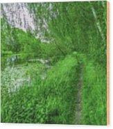 Along Creek #g1 Wood Print