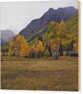 Along The Alpine Loop 2 Wood Print