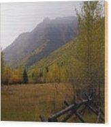 Along The Alpine Loop Wood Print