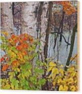 Along The Breezeway In Autumn 2014 Wood Print