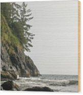 Along The Coast Wood Print