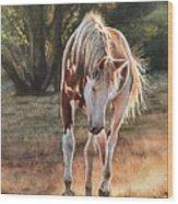 Along The Dusty Trail Wood Print