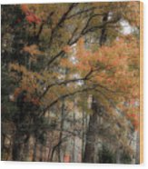 Along The Edge Of October Wood Print