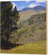 Along The Hell Roaring Creek Trail Wood Print
