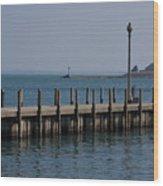 Along The Lakeshore Wood Print