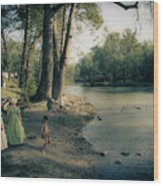 Along The Mississinewa River Wood Print