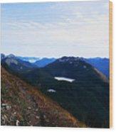 Along The Mt Defiance Trail Wood Print