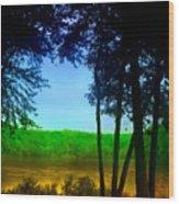 Along The Muddy River Wood Print