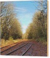 Along The Old Railroad  Wood Print
