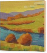 Along The River In Steamboat Springs II Wood Print
