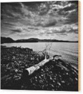 Along The Riverbank Of Beacon Wood Print