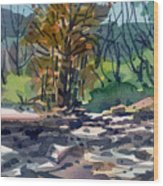 Along The Russian River Wood Print