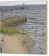 Along The Shore Of Biloxi Bay Wood Print