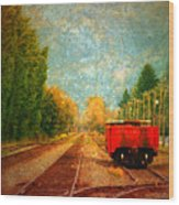 Along The Tracks Wood Print