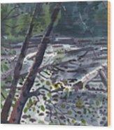 Along The White River Wood Print