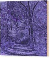 Along The Windowpane Path Wood Print