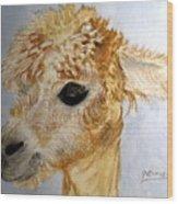 Alpaca Cutie Wood Print