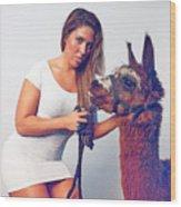 Alpaca Mr. Tex And Breanna Wood Print