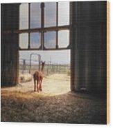 Alpacca Guard Wood Print