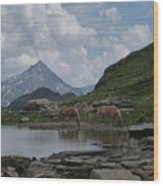 Alps' Horses Wood Print