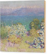 Alpes Maritimes From Antibes Wood Print