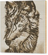 Alpha Male - The Wolf - Antiqued Wood Print