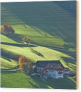 Alpine Farm And Meadows In Autumn Wood Print