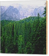 Alpine Forest Wood Print