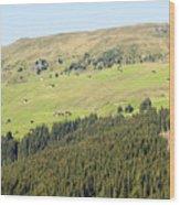 Alpine Forest Landscape.  Wood Print