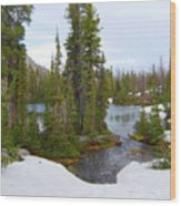 Alpine Lake Area Wood Print