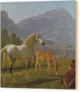 Alpine Landscape Wood Print
