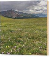 Alpine Meadow Before Mount Guyot Wood Print