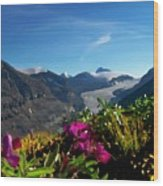 Alpine Meadow Flowers Overlooking Glacier Wood Print