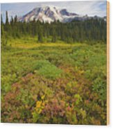 Alpine Meadows Wood Print