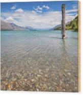 Alpine Scenery From Dart River Bed In Kinloch, New Zealand Wood Print