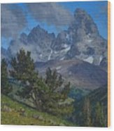 Alpine Sentinels Wood Print