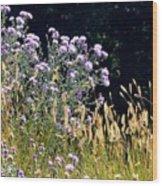 Alpine Thistles And Grasses Wood Print