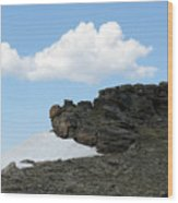 Alpine Tundra - Up In The Clouds Wood Print