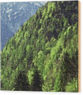 Alpine View In Green Wood Print