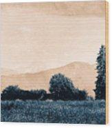 Alpine Western Wood Print