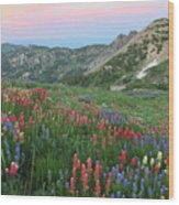 Alpine Wildflowers And View At Sunset Wood Print