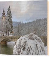 Alpine Winter Beauty Wood Print